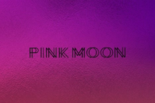 Introducing our Partners - Pink Moon (HR)