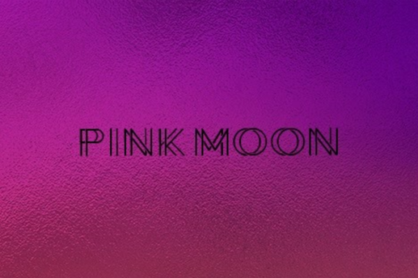Introducing our Partners – Pink Moon (HR)